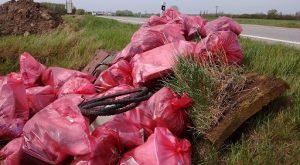 Niekoľko takýchto kôp vyzberaného odpadu sme spravili. Tie potom pracovníci mesta odpratali.