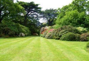 zahrada (zdroj: imavillagebicycle.com)